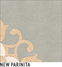 NEW PARINITA1