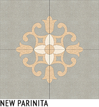 NEW PARINITA4