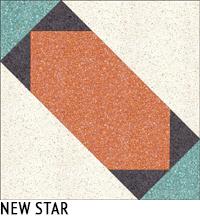 NEW STAR1