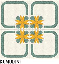 KUMUDINI4